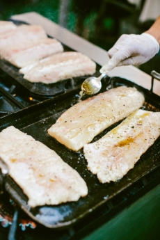 Plancha Grilled Halibut