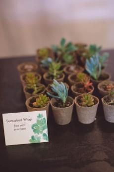 Succulent Wraps